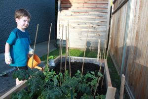 cutie's garden