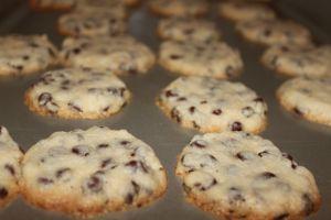 choc chipshortbread cookies